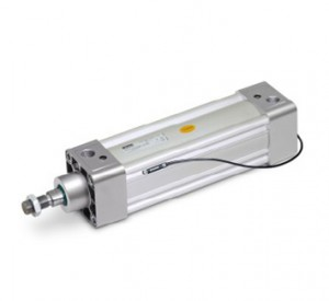 P1D Pneumatic ISO Cylinders